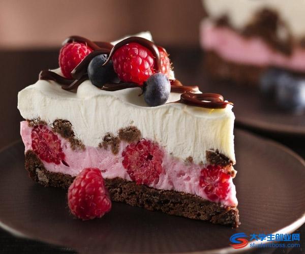2013年夏日甜品店创业计划书