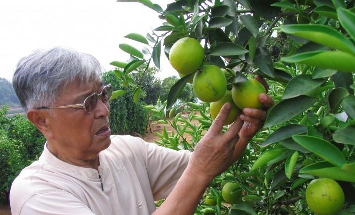三個70多歲老人的創業故事