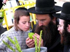 向犹太人学习十二个注册送68元赚钱商法