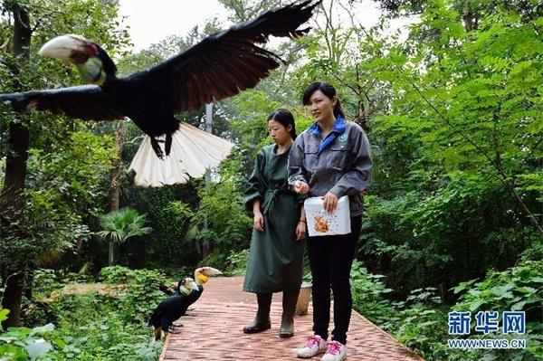 """""""80后美女兽医在南京红山森林动物园"""