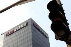 民生银行最大股东安邦 到底属于谁?