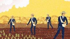 电商巨头纷纷入局 农资电商该怎么做?