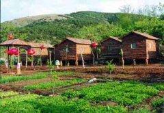 发现几个适合农村创业的好路子