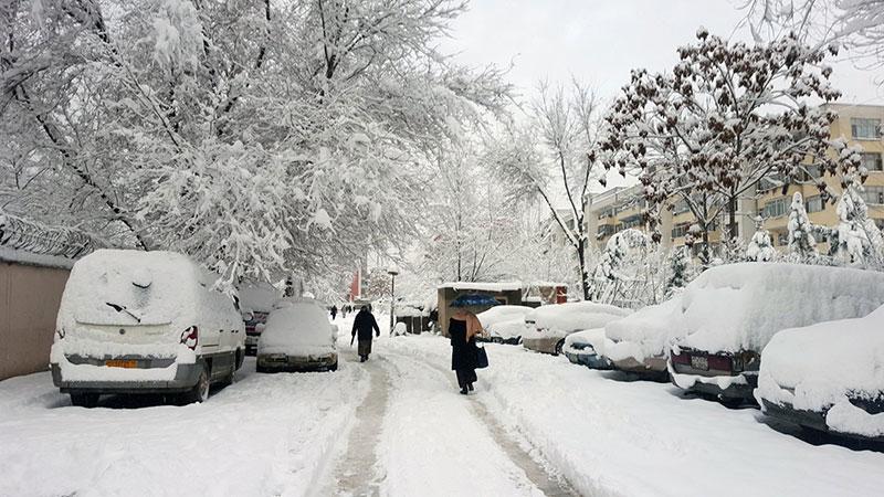 阿富汗大雪天气 多地交通中断全国放假一天