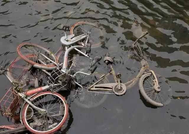 """共享单车""""尸骨""""下谁捞到了真金白银:资本还是小偷"""