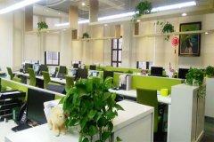 公司提高员工工作效率的四个法则