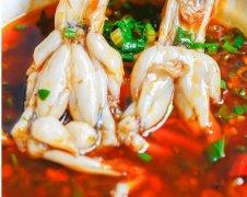 日收2万的美蛙鱼头如何从火锅中突围