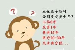 五个险种分别要交多少年?