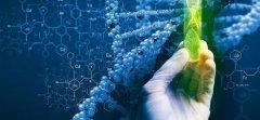 穿越10年的脑洞:人工智能、生物科技、能源产业将如何变化?