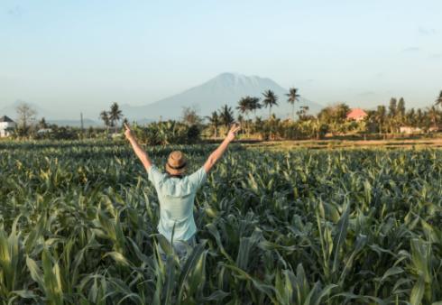 八個適宜在農村創業致富的好項目
