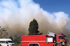 广东佛山发生山火 现在情况如何?