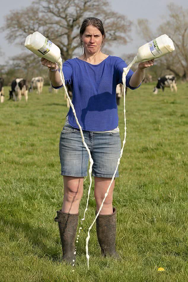 受新冠病毒影响,英国奶农为何被迫把奶倒掉,为何不把鲜奶制成奶粉?