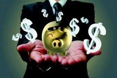 最赚钱的养殖项目有哪些?这几种最赚钱!