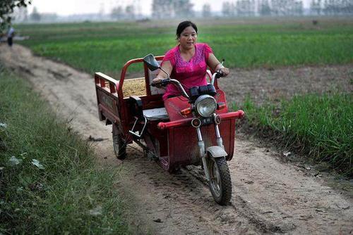 农村女性在家做什么能赚钱?做什么项目比较好?